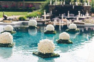 white-rose-floats-in-backyard-swimming-pool