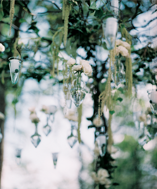 cone-shaped-vessels-hanging-from-tree
