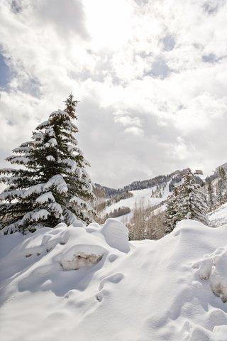 snowy-evergreen-and-ski-slopes-in-aspen-colorado