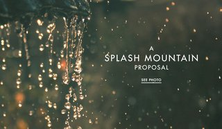 walt-disney-world-splash-mountain-proposal-photo