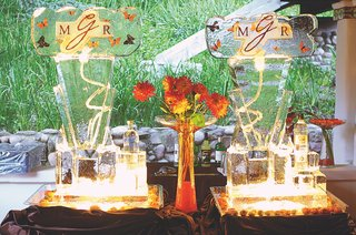 martini-ice-bar-dispenser-with-orange-butterfly-design