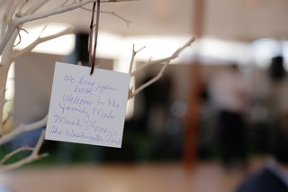 wedding-reception-tree-with-hanging-notes-from-guests