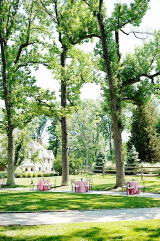 pink-cocktail-tables-with-chameleon-chairs-under-trees