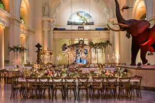 wedding-reception-at-the-field-museum-in-front-of-sue-the-t-rex-dinosaur-and-mammoth-elephant