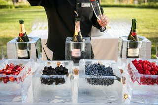 various-berries-ice-blocks-cocktail-hour-southern-california-champagne-drinks-outdoors