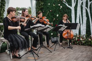 wedding-ceremony-hedge-wall-with-flowers-and-birch-tree-design-string-quartet-musicians-vineyard