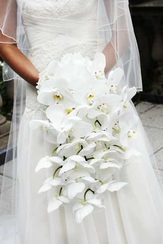 bride-holding-hydrangea-and-orchid-flowers