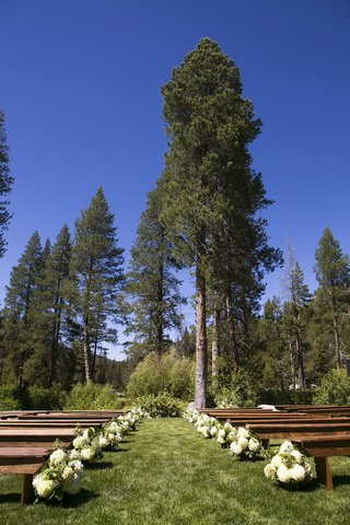 green-grass-and-trees-with-wood-pews