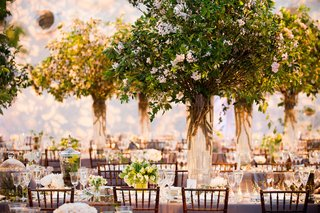 wedding-reception-centerpiece-with-green-tree-white-flower-and-branches