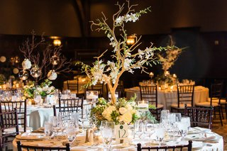 wedding-reception-rustic-branch-tree-centerpiece-with-flowers-and-candle-votives-green-brown-colors