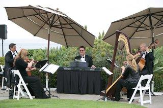 harp-violin-base-string-piano-instruments-at-wedding