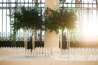 large-display-of-greenery-on-gold-stands-above-champagne-flutes-for-escort-cards