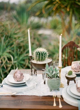 reception-table-with-potted-cactus-and-tapered-candles