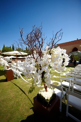 tree-branch-flower-arrangement-with-orchids-at-alfresco-wedding