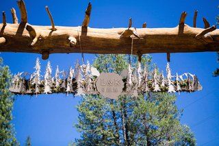 wooden-cut-out-trees-and-pine-hanging-from-tree-trunk