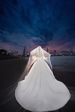 bride-in-a-strapless-pnina-tornai-dress-with-cathedral-train-peter-langner-veil-chicago-lakefront