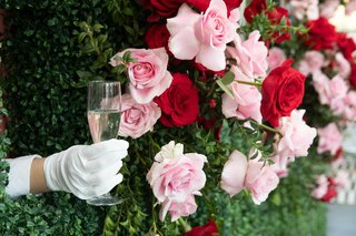 gloved-hand-reaching-out-from-boxwood-and-rose-wall-to-serve-champagne