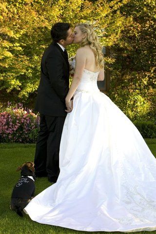 bride-and-groom-kiss-in-front-of-small-dog