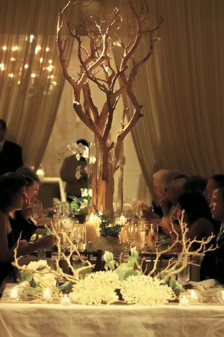 manzanita-branches-and-coral-centerpiece