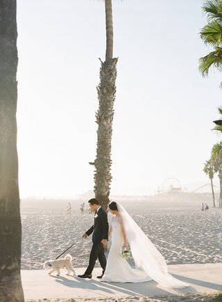 bride-in-pretty-wedding-dress-sheer-ceremony-top-veil-groom-with-small-dog-walking-on-beach-palms