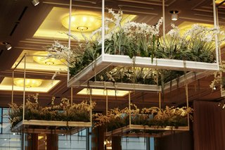 white-orchids-on-platforms-suspended-from-ballroom-ceiling