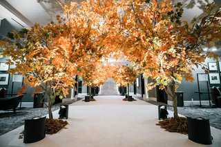 trees-with-fall-foliage-line-entrance-to-reception