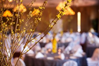 branch-with-yellow-flowers-at-spring-wedding-reception