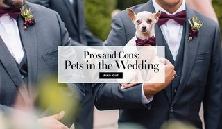 the-perks-and-drawbacks-of-adding-your-furry-or-not-so-furry-friends-into-your-big-day