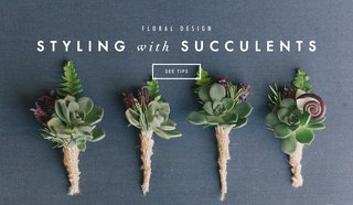 succulents-in-wedding-decor-and-floral-design