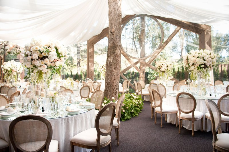 Tented Reception with Tree in the Center