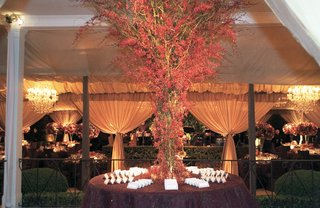 tree-of-red-orchids-surrounded-by-wedding-escort-cards