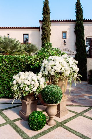 boxwood-topiary-balls-next-to-white-flowers-on-top-of-urns
