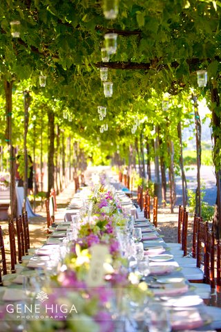 dinner-reception-underneath-hanging-grape-arbor