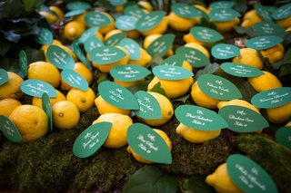 green-paper-leaves-attached-to-lemon-as-escort-card