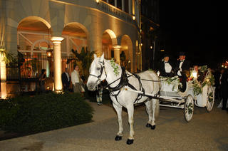 white-horse-pulling-white-carriage