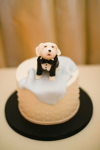 small-grooms-cake-surprise-swiss-dot-design-topper-designed-to-look-like-dog-in-tuxedo-blue-blanket