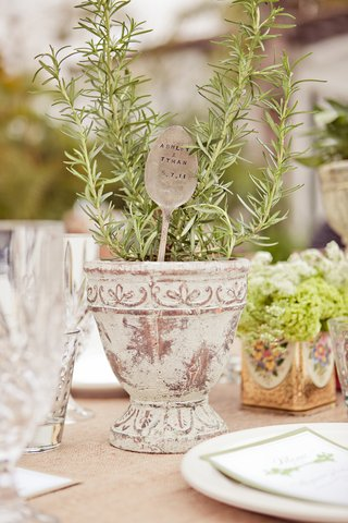 rosemary-herb-centerpiece-in-pot