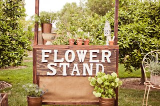 wood-stand-where-guests-potted-plants