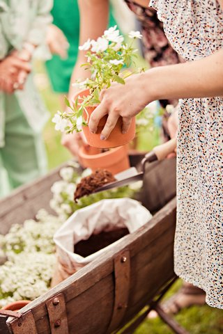 guests-pot-plants-as-favors