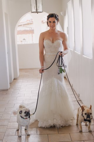 bride-wearing-trumpet-style-gown-with-pugs