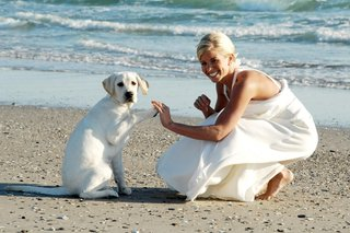 bride-shakes-lab-puppys-paw-on-beach