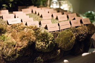 escort-cards-on-a-table-covered-in-moss