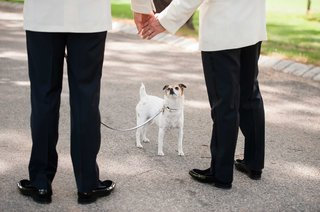couple-and-their-dog-maisy-jack-russell-terrier