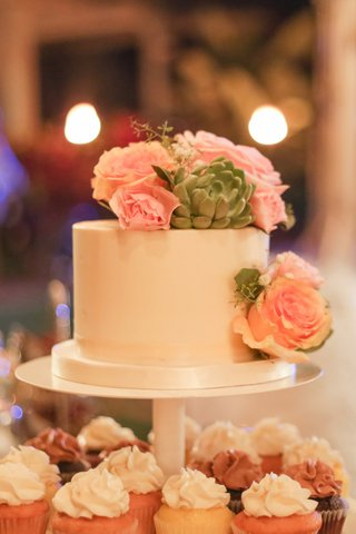 cake-with-succulents-and-pink-roses-cupcake-station