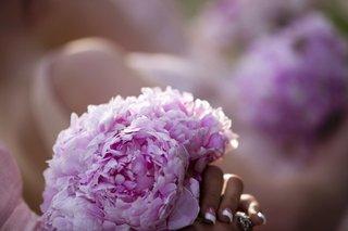 bridesmaids-bouquet-of-pink-peonies