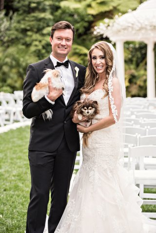 bride-in-kittychen-couture-lace-gown-and-mantilla-veil-groom-in-hugo-boss-holding-dogs