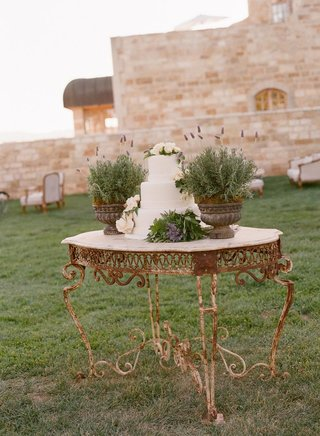 iron-table-with-three-layer-cake-and-herb-plants