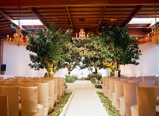 champagne-chair-covers-and-indoor-trees
