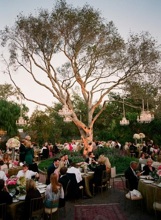 persian-rugs-and-oak-tree-with-chandeliers