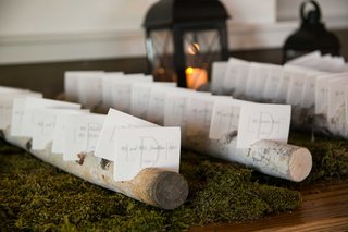 escort-cards-branched-tree-trunks-moss